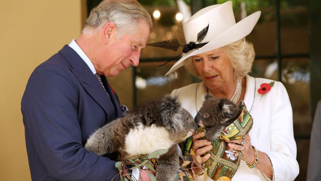 Australia loves Charles and Camilla