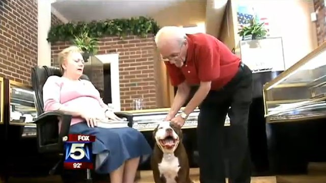 Hero dog saves owner's life twice